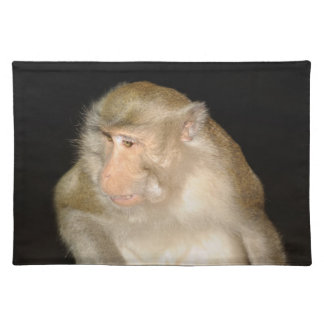 Curious macaque from Phuket island in Thailand Placemat
