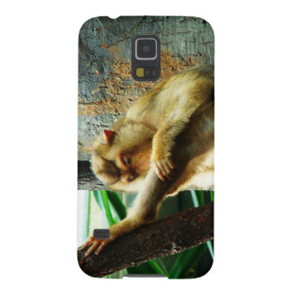 Curious Monkey Galaxy S5 Cover