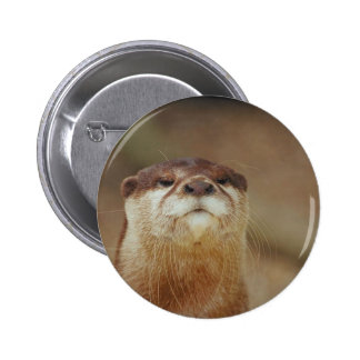 Curious Otter 2 Inch Round Button