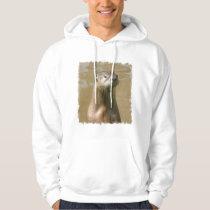 Curious Otter Hooded Sweatshirt