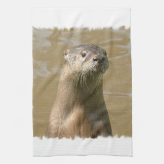 Curious Otters Kitchen Towel