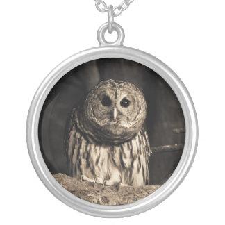 Curious Owl Necklace