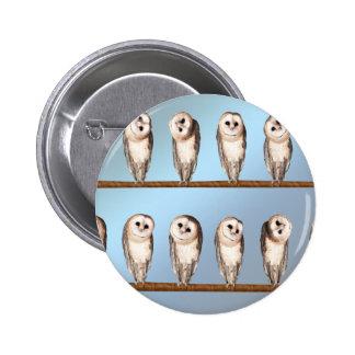 Curious owls pins