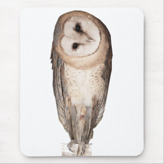 Curious owls card. mouse pad
