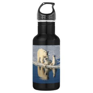 Curious Polar Bear Family Stainless Steel Water Bottle