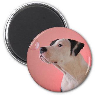 Curious pup magnet