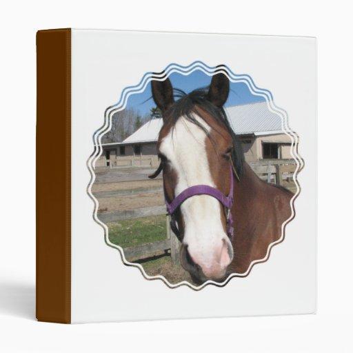 Curious Quarter Horse Binder