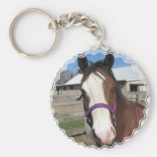 Curious Quarter Horse Keychain