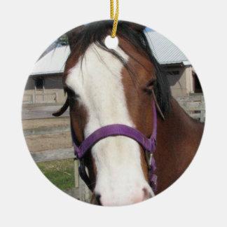 Curious Quarter Horse Ornament