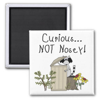 Curious Raccoon 2 Inch Square Magnet
