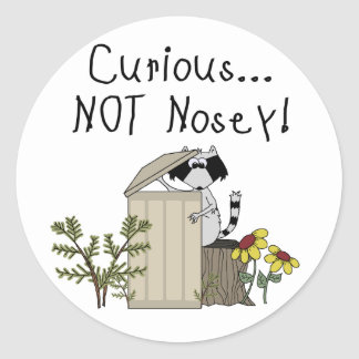 Curious Raccoon Classic Round Sticker