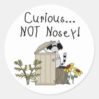 Curious Raccoon Classic Round Sticker