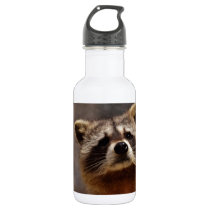 Curious Raccoon Water Bottle