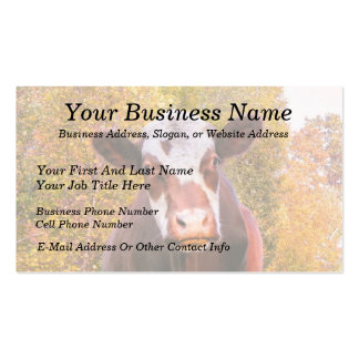 Curious Red Cow Double-Sided Standard Business Cards (Pack Of 100)