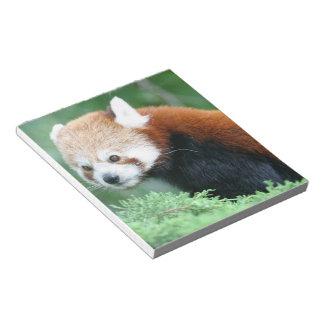 Curious Red Panda Notepad