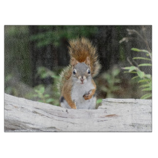 Curious Red Squirrel Cutting Board