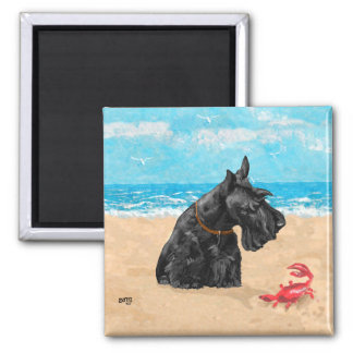 Curious Scottie at the Beach 2 Inch Square Magnet