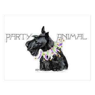 Curious Scottie Party Animal Postcard