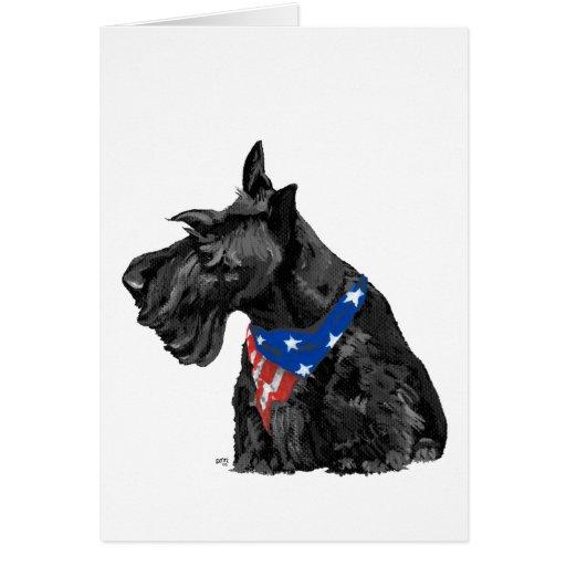 Curious Scottish Terrier Patriotic Card