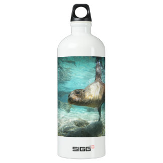 Curious sea lion Galapagos underwater Aluminum Water Bottle