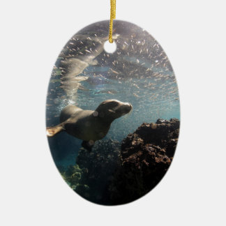 Curious sea lion underwater Galapagos Islands Christmas Tree Ornament