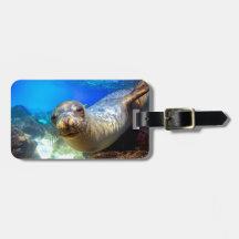 Curious sea lion underwater Galapagos paradise Bag Tags