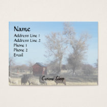 Curious Sheep Business Card