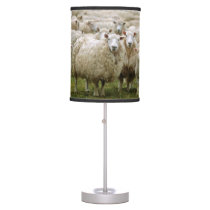 Curious Sheep Desk Lamp