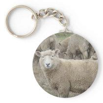Curious Sheep Keychain
