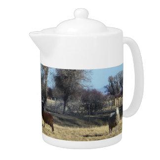 Curious Sheep Teapot