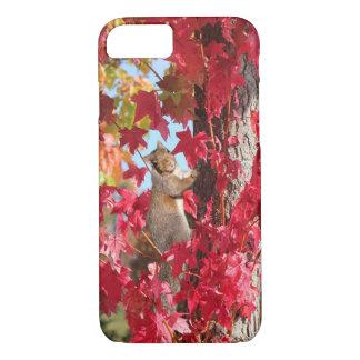 Curious squirrel in autumn tree iPhone 7 case