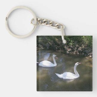 Curious Swans Keychain