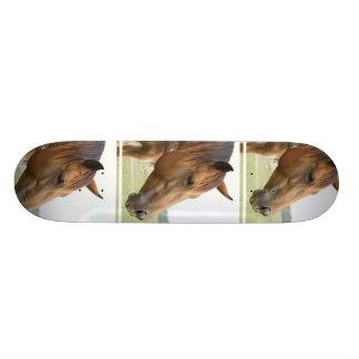Curious Thoroughbred Skateboard