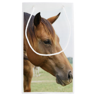 Curious Thoroughbred Small Gift Bag