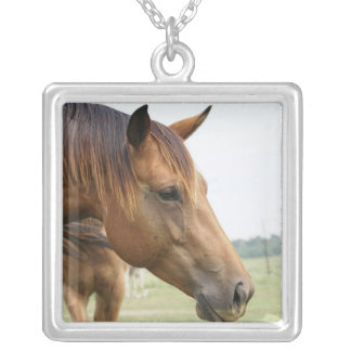 Curious Thoroughbred Sterling Silver Necklace
