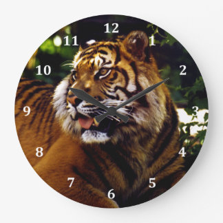 Curious Tiger Large Clock