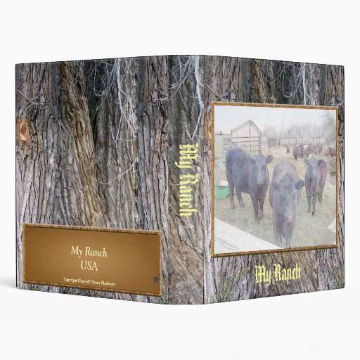 Curious Young Black Angus 3 Ring Binders