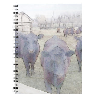 Curious Young Black Angus Notebook