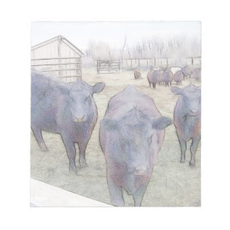 Curious Young Black Angus Notepad