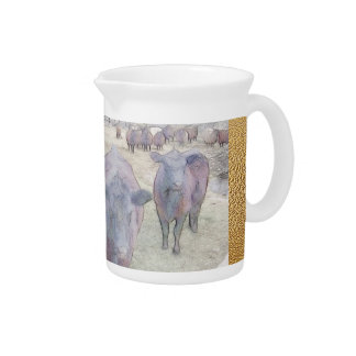Curious Young Black Angus Drink Pitchers