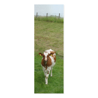Curious Young Cow Photo Bookmark Gift Business Card Templates