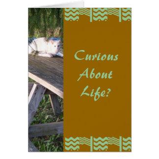 CuriousAbout Life? Card