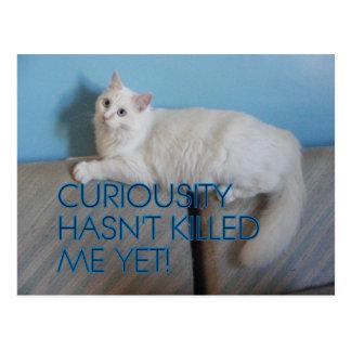 Curiousity no ha matado me con todo a la postal