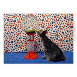 Curiousity - protagonizando Kori el gatito del res Felicitacion