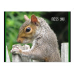 Curiously Cute, Miss you! Postcard