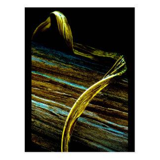 """""""Curl On Wood"""" JTG Art Postcard"""
