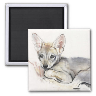 Curled Arabian Wolf Pup 2009 2 Inch Square Magnet