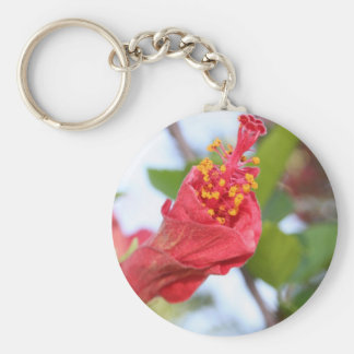 Curled Petals of A Red Hibiscus Bud Basic Round Button Keychain