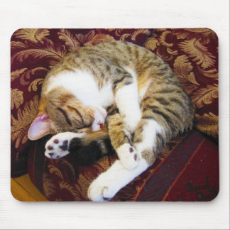 Curled Up Sleeping Kitty Mouse Pad