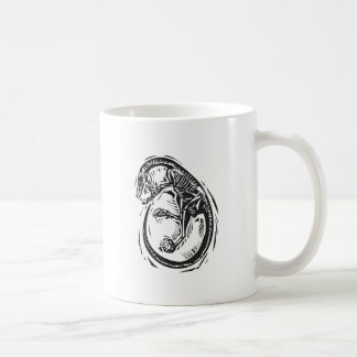 Curled Velociraptor Fossil Coffee Mug